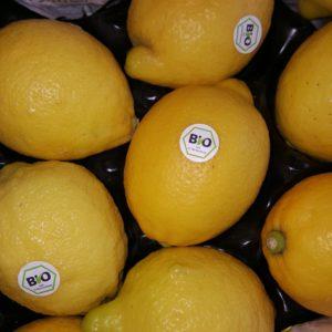 citron bio italie au-potager-de-becheret ©