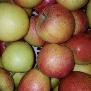 pomme braeburn au-potager-de-becheret