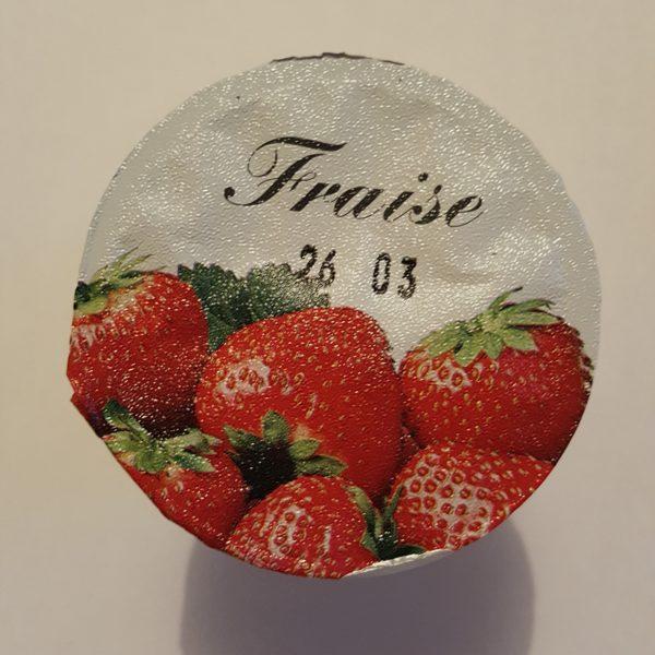 fraise au-potager-de-becheret©