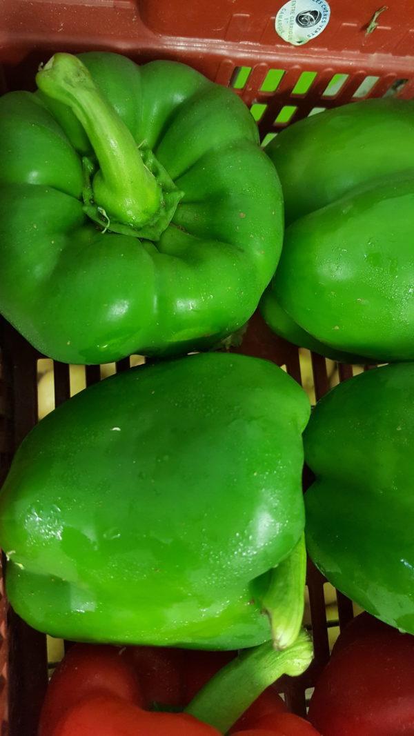 poivrons verts au-potager-de-becheret©
