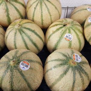 melon rouge gorge au-potager-de-becheret©