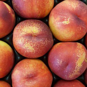 nectarine jaune au-potager-de-becheret©