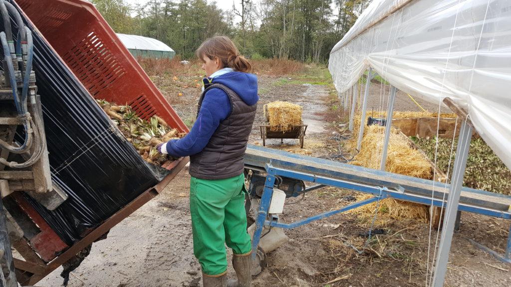plantation 2018 au-potager-de-becheret©